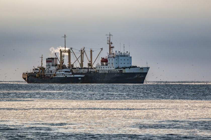 23 წლის ქართველი მეზღვაური გემიდან 7 იანვარს გაუჩინარდა - საზღვაო ტრანსპორტის სააგენტო
