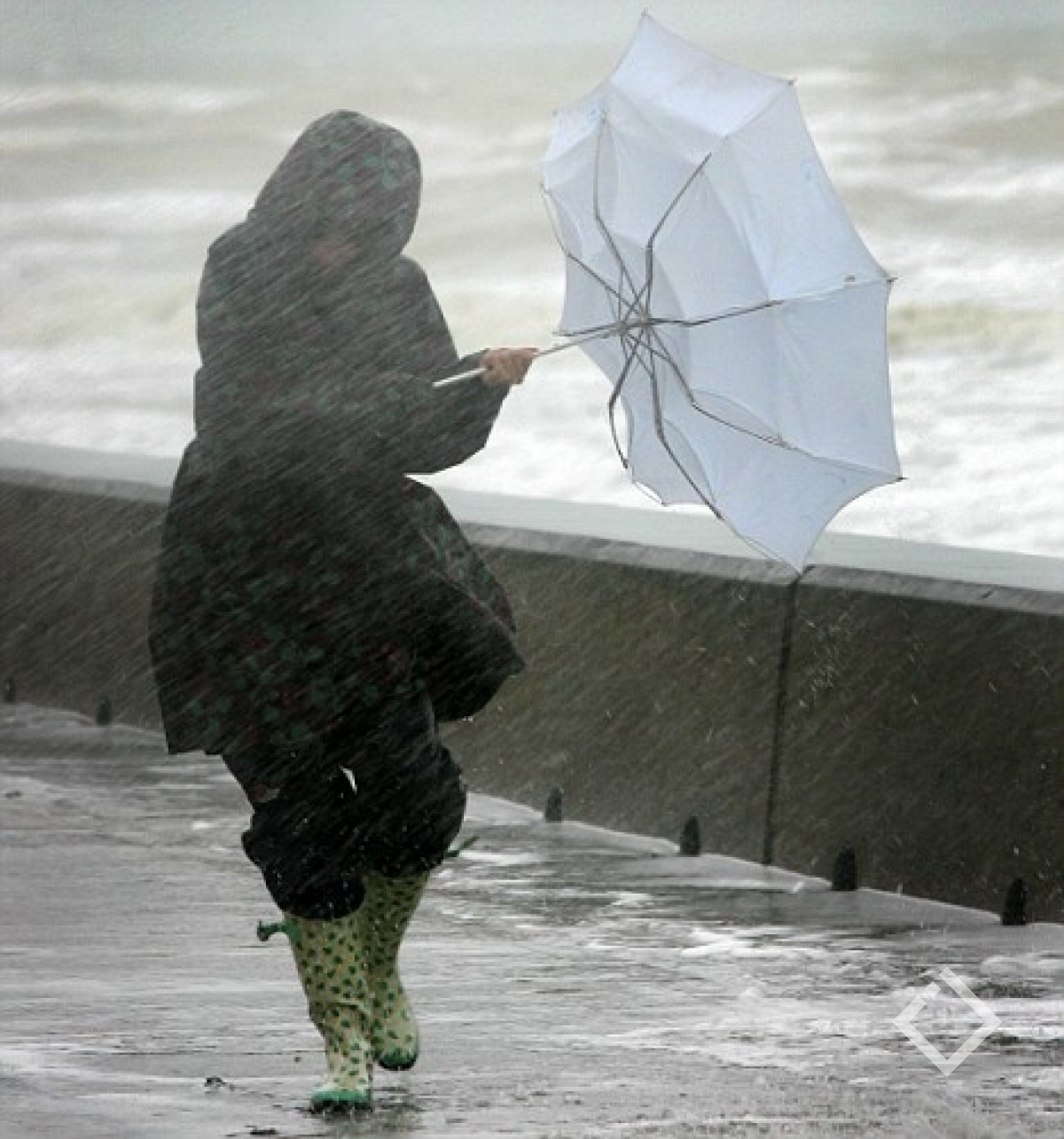 долгое время картинки приколы на тему ветра и дождя мне