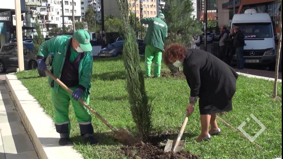 ხის დარგვის საერთაშორისო დღე
